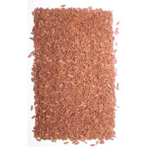 Рис красный