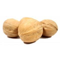 Грецкий орех чили в скорлупе